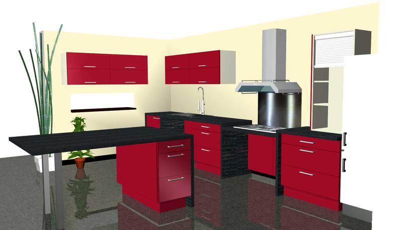 Mister cuisine am nagement pour personnes en situation for Amenagement cuisine 3d